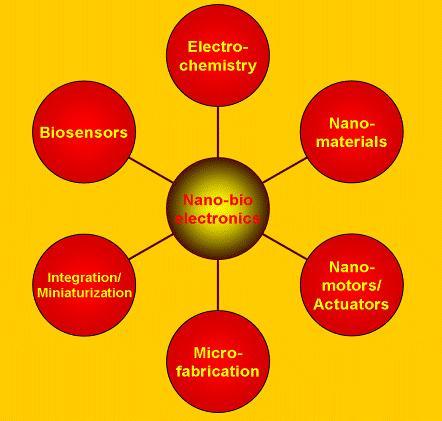 Nanobioelectronics