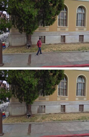 pedestrian remover dog