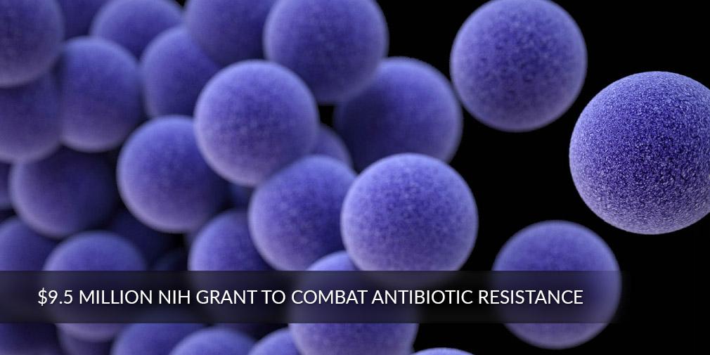 $9.5 Million NIH Grant to Combat Antibiotic Resistance