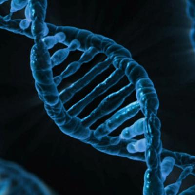 Even DNA that Doesn't Encode Genes Can Drive Cancer