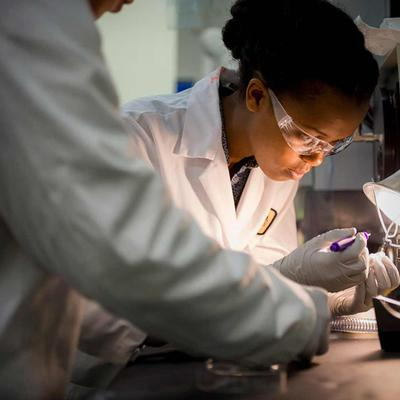 Chancellor's Research Excellence Scholars Program Launches 175 Student-Research Projects