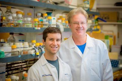 How Bacteria Steal Antibiotic-Resistant Genes