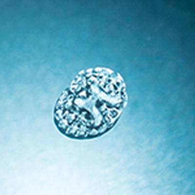 3D printed implants promote nerve cell growth to treat spinal cord injury