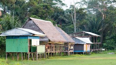 From jungle huts to city apartments: how do chemicals and microbes differ?