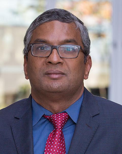 Photo of Nambirajan Seshadri